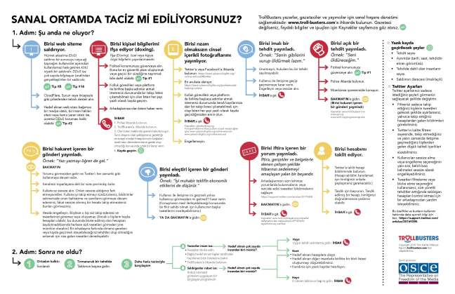 TrollBusters-Infographic-Turkish.jpg