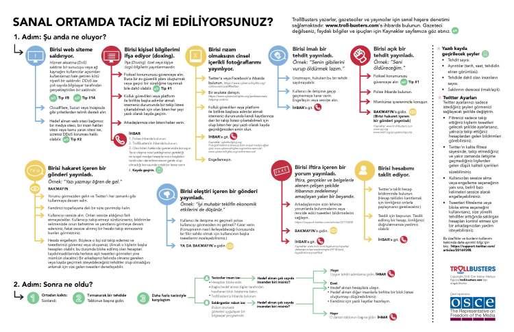 TrollBusters-Infographic-Turkish.jpg